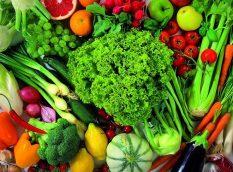 Gıda ve Mutfak Hijyeni